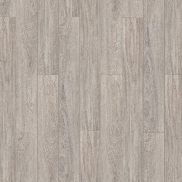 laminat timber forester dub rotondo nov